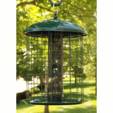 Caged Squirrel Resistant Feeders